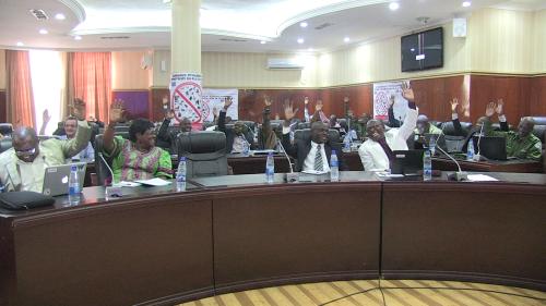 validation du plan d'opérations 2016 par les participants au cocosi